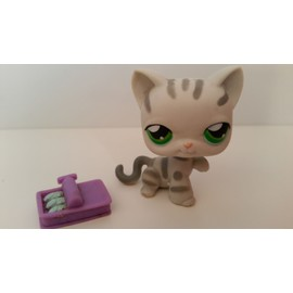 Littlest petshop chat gris tigr lps pet shop collection jeu jouet collector hasbro - Petshop tigre ...