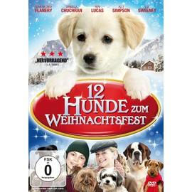Image 12 Hunde Zum Weihnachtsfest