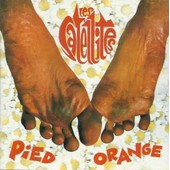Pied Orange - Les Satellites