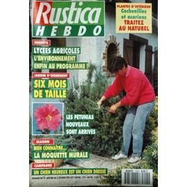 RUSTICA HEBDO N° 1205 DU 27/01/1993 - PLANTES D'INTERIEUR - LYCEES AGRICOLES - JARDIN D'ORNEMENT - LES PETUNIAS - LA MOQUETTE MURALE - LE CHIEN.