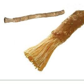 Baton De Siwak Naturel Brut ( Miswak )