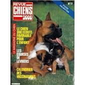 Revue Chiens 2000 N� 77 Du 01/04/1983 - Dalmatiens - Le Chien Et L'enfant - Les Courses De Levriers - Calendrier Des Vaccinations.