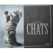 L'essentiel Des Chats de L'essentiel des chats