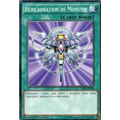 R�incarnation De Monstre.Yugioh.Ys14-Fr028