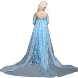 Magnifique Robe Elsa, Reine Des Neiges ! Pour Adulte