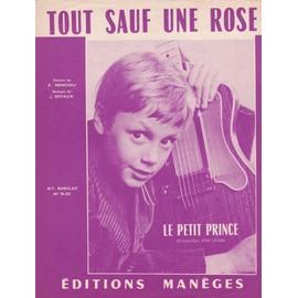 Tout sauf une rose (le Petit prince)