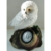 Hibou Solaire Spot Lumineux Chouette Dame Blanche