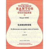 Sanz Canarios 15 Diferencias Escogidas Sobre El Canario