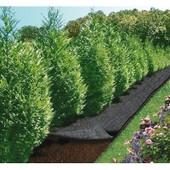 Feutre De Jardin Cap Vert Bri-016111