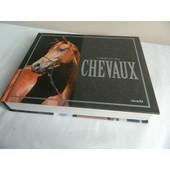 L'essentiel Des Chevaux-Andr�a Fitzpatrick-2012 de -Andr�a FITZPATRICK