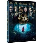 Into The Woods : Promenons-Nous Dans Les Bois de Rob Marshall