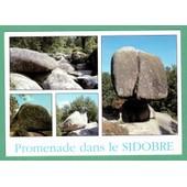 Carte Postale Promenade Dans Le Sidobre - Circul�e Avec Timbre Type Marianne De Luquet