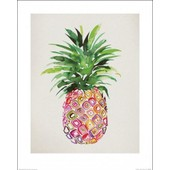 Ananas Poster Reproduction - Nature Morte, Summer Thornton (50x40 Cm)