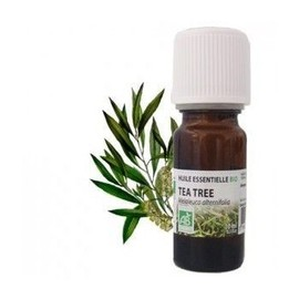 Huile Essentielle Tea Tree Bio (Arbre � Th�) - 10 Ml