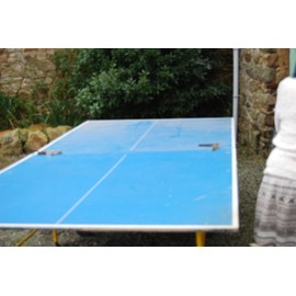 Table de ping pong exterieur decathlon ping pas cher - Table de ping pong pas cher decathlon ...