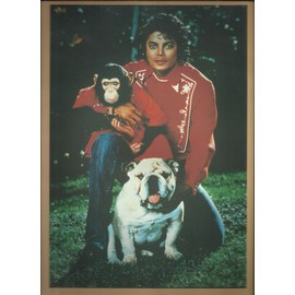 michael jakson  chez lui a encino en 1985