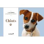 Chiots - Calendrier Perp�tuel 52 Semaines de Val�rie Tognali