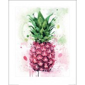 Ananas Poster Reproduction - Tropical, James Paterson (50x40 Cm)