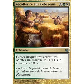 Magic Cr�ations Divines : R�colter Ce Qui A �t� Sem� 154/165 X4