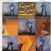 The Forecast (Calls For Pain)/Holdin' Court - Robert Cray