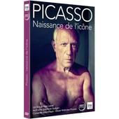Picasso : Naissance D'un Ic�ne de Hopi Lebel