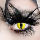 Lentilles De Contact De Couleur Fantaisie Crazy Lens  Halloween   Déguisement Fetes Soirées 4e3590257518
