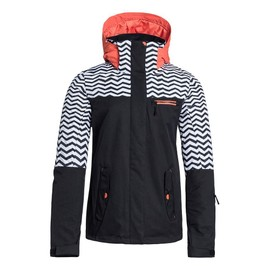 Roxy Jetty Block Parka De Ski