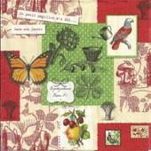 Lot De 2 Serviettes D�co Papier: Le Petit Jardinier