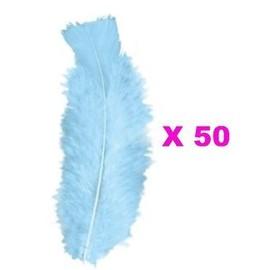 50 Plumes Droites Bleues Turquoises 15 Cm