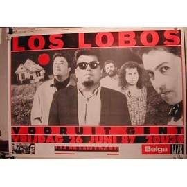Los Lobos - AFFICHE MUSIQUE / CONCERT / POSTER