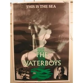 Waterboys The - AFFICHE MUSIQUE / CONCERT / POSTER