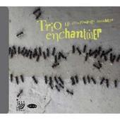 Les Composantes Invisibles - Trio Enchantier