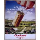 Publicit� Papier - Vin, Bouchon Chantovent, Producteurs Du Languedoc De 1982