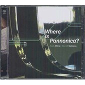 Benoit Delbecq - Andy Milne : Where Is Pannonica ? - Delbecq, Benoit
