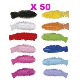 50 Plumes Droites Multicolores 15 Cm