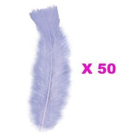 50 Plumes Droites Violettes 15 Cm
