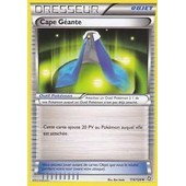 Carte Pokemon Dresseur 'cape Geante ' 114/124