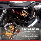Stickers Harley Davidson Sportster Cherry Bomb Pour Forty-Eight Seventy-Two Iron 883 Superlow 1200 Custom