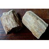 Deux Pi�ces De Bois Fossilis�
