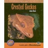 Crested Geckos de ian black