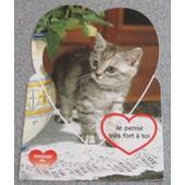 Carte Postale Message Du Coeur : Chaton Tigr� Gris Sur Un Napperon De Dentelle - Message Je Pense Tr�s Fort � Toi - 10.5x14.5cm - Chatons N�55201 Des Editions M. G.