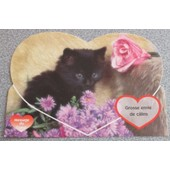 Carte Postale Message Du Coeur : Chaton Noir Parmi Des Fleurs Et De La Fourrure - Message Grosse Envie De C�lins -14.5x10.5cm - Messages D�Animaux N�51502 Des Editions M. G.