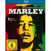 Marley (Omu) de Marley Bob/Marley Rita