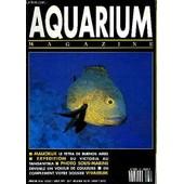 Aquarium Magazine N� 66 Malicieux Le Tetra De Buenos Aires - Expedition Du Victoria Au Tanganyika - Photo Sous Marine Devenez Un Voleur De Couleurs - Dossier Vivarium Serpent De Verre A ... de COLLECTIF