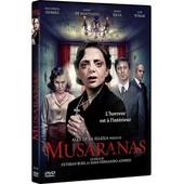 Musaranas de Esteban Roel