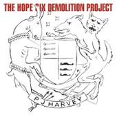 The Hope Six Demolition Project - Harvey Pj