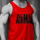Veste De Musculation Fitness Animal D�bardeur