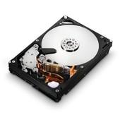 Disque Dur 250Go - Hitachi Deskstar 7K1000.C / HDS721025CLA382