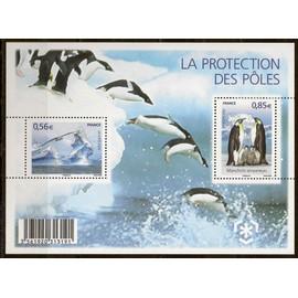 F4350, protection des zones polaires et glaciers, 2009