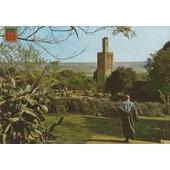 C.Postale : Maroc - Rabat - Chellah Avec Sa Mosqu�e